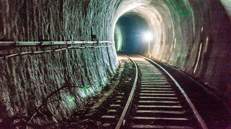Nur die wenigsten Autofahrer:innen auf der Max-Brauer-Allee dürften erahnen, dass sich nur wenige Meter unter ihnen dieser verlassene Eisenbahntunnel befindet.