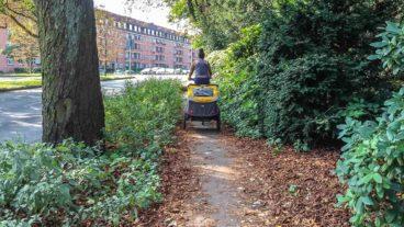 Zugewucherter Fahrradweg an der Breitenfelder Straße am Eppendorfer Park
