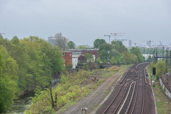 Auf der gerodeten Freifläche sollen künftig die S-Bahngleise verlaufen, die jetzt noch am rechten BIldrand liegen. Auf der Fläche der S-Bahngleise verlaufen dann Fernbahngleise in den künftigen Bahnhof Altona