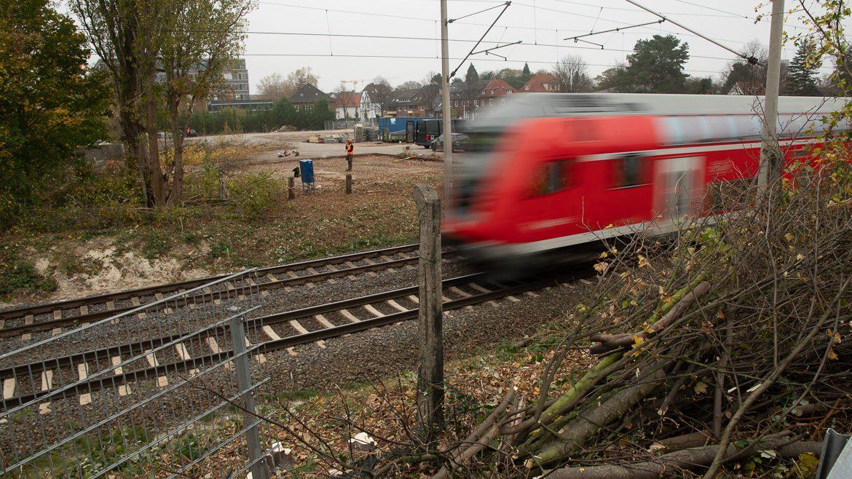 Die ersten abgeholzten Sträucher an der Bahnstrecke Hamburg - Lübeck zeigen: Die Bauarbeiten für die S4 haben angefangen. Im Bildhintergrund waren am Dienstag zwei Bauarbeiter mit Kettensägen damit beschäftigt, weitere Bäume und Sträucher abzuholzen. Dort sollen die zwei neuen S4-Gleise später einmal verlaufen.
