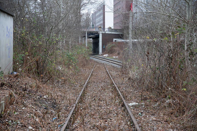 Der Gleisanschluss hat seit einigen Jahren keine Weichenverbindung mehr zur Güterumgehungsbahn. Auffallend ist, dass das alte und zugewachsene Gleis in den vergangenen Wochen freigeschnitten wurde. Frischer Rost auf den Schienenköpfen weist daraufhin, dass das abgeklemmte Gleis erst kürzlich befahren wurden.