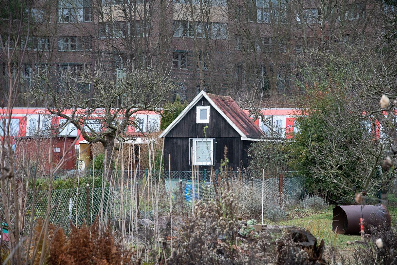Die meisten alten Lauben in der Kleingartenanlage standen Anfang Januar noch. Bis Ende März soll alles abgerissen sein.