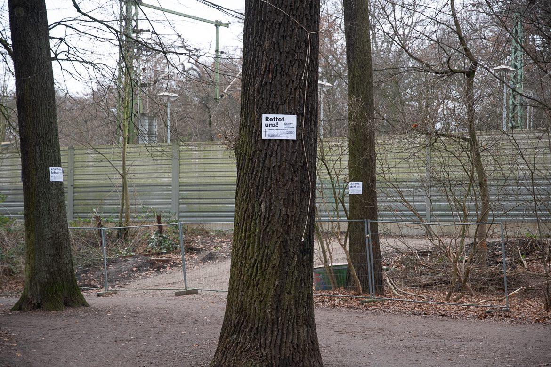 Die Deutsche Bahn will diese Bäume fällen, um die künftige Baustelle der S4 besser zu erreichen.