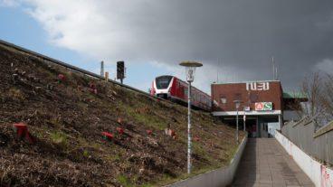 Abgeholzter Bahndamm am S-Bahnhof Diebsteich.