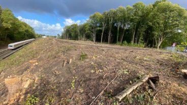Die ersten Flächen für die künftige U5 in Alsterdorf sind gerodet. Hier wird bald eine große Wagenhalle stehen.