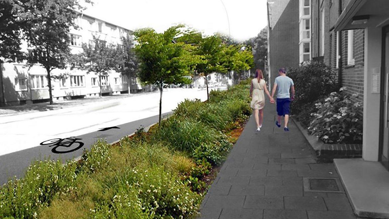 Mehr Pflanzen und Platz für Fahrräder - weniger Platz für Autos. So soll die Königstraße in Altona künftig aussehen.